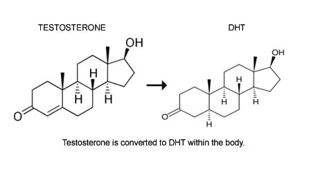 TESTOSTERONE-DHT