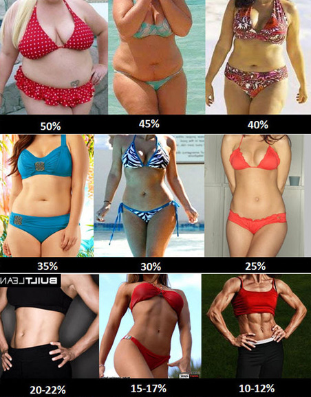 Ideal Body Fat Percentage Chart: How Lean Should You