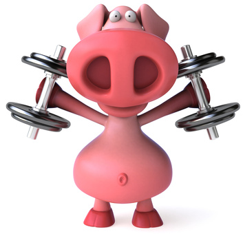 Pig Working Out