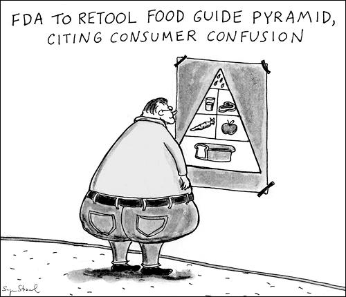 Food Pyramid Fat Guy