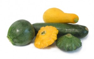 summer squash group
