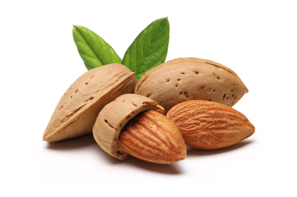 Almonds and shells