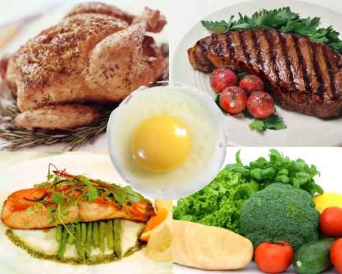 MMA Diet - more fruits/vegetables and less protein than a bodybuilder's diet.