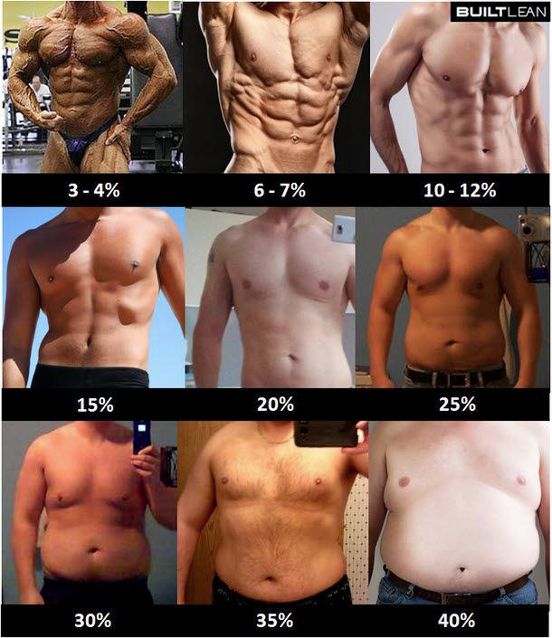 What's My Body Fat? (Men & Women Helpful Images/Charts)